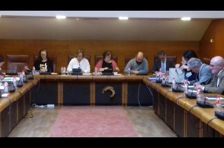 The president of CERMI Cantabria has appeared this Thursday in the regional Parliament to address the keys of the Bill of Guarantee of the Rights of Persons with Disabilities and the Law for Effective Equality between Men and Women