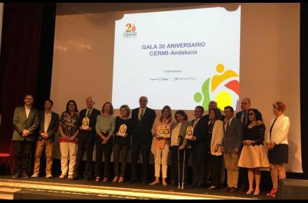 Delivery of the 'CERMI-Andalucía 2018 Awards'