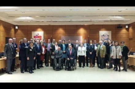 Disability National Committee